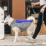 Ezer Waterproof Dog Coat, Soft Fleece Lining Reflective Pet Jacket for Cold Weather, Outdoor Sports Dog Raincoat Snowsuit Apparel, S- XXXL (Blue-XXL)
