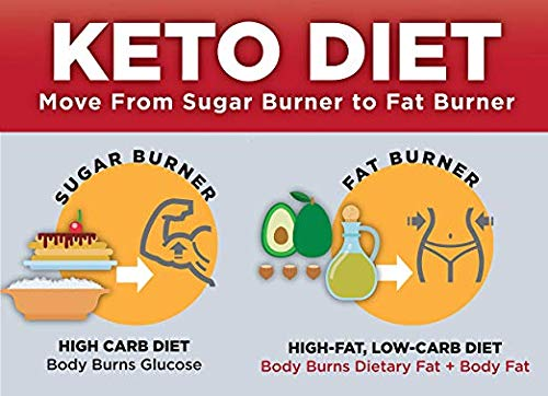 Keto Science Ketogenic Meal Shake Vanilla Dietary Supplement, Rich in MCTs and Protein, Paleo Friendly, Weight Loss, 14 servings, 20.7 oz Packaging May Vary 3