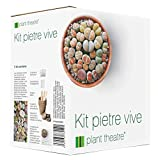 Kit pour plantes cailloux Plant Theatre - Kit cadeau de graines de Lithops - Tout ce dont vous avez...