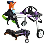 HiHydro 6 Types Cart Pet Wheelchair for Handicapped Hind Legs Small Dog Cat/Doggie/Puppy Walk Stainless Steel