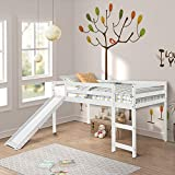 LZ LEISURE ZONE Twin Loft Bed with Slide for Kids/Toddlers, Wood Low Sturdy Loft Bed, No Box Spring Needed (White)