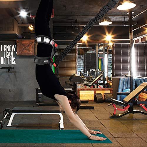 51zHD2SDw+L - Home Fitness Guru