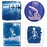 Bignut Cyanotype Paper 24 Sheets Nature Printing Paper Solar Activated Printing Paper for Sun Art Assorted Color Spin Art Sunprint Paper Kit 8.2'' x 11.4'' A4