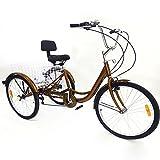 BTdahong Tricycle Adulte à 6 Vitesses, Vélo à 3 Roues, Tricycle de 24', Vélo en Aluminium avec Panier à Dossier