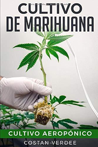 Cultivo De Marihuana: Cultivo Aeropónico