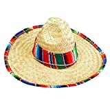 GiftExpress 1 Pack of 15.5' Wide Child Sombrero Hat with Serape Trim, Cinco de Mayo Straw Hat, Childs Mexican Sombrero Costume Hat