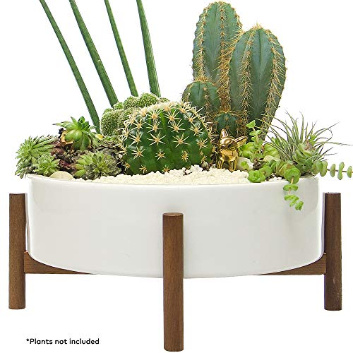 Mid Century Large Round Succulent Planter Bowl with Drainage, 10 Inch White Ceramic Pot with Wood Stand