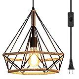 Ganeed Lámpara colgante Plug in, lámpara colgante industrial vintage de metal Swag, lámpara de techo de granja con cable de 16.4 pies e interruptor de encendido/apagado para isla de cocina