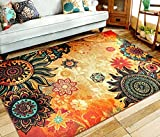 EUCH Contemporary Boho Retro Style Abstract Living Room Floor Carpets,Non-Skid Indoor/Outdoor Large Area Rugs,75'x98' Lotus