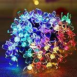 N-A Solar Flower...image