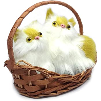 Buy Urvi Creations Say I Love You Musical I Love You Cute Cat In Basket Showpiece Best Valentines Day Gift For Girlfriend Boyfriend Wife Husband Online At Low Prices In India