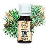 Huile de Pin 10ml - Pinus Sylvestris - Autriche - 100% Pure et Naturelle - pour le Aromathérapie - Sauna - Relaxation