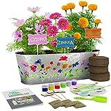 Kit de Cultivo de Flores Pinta y Planta - Cultiva Cosmos, Zinnia, Flores de Calndula: Incluye Todo lo Necesario para Pintar y Plantar: un Gran Regalo para los nios - Stem