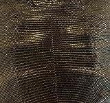 pelle Auténtica exótica de Lucertola Varanus cabeza de marrón oscuro brillante Back Cut – para decoración, zapatos, bolsos y accesorios, sillas textiles