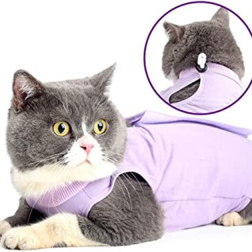 Cat Recovery Suit for Abdominal Wounds