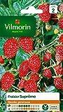 Vilmorin 3585042 Pack de Graines Fraisier 4 Saisons Suprême