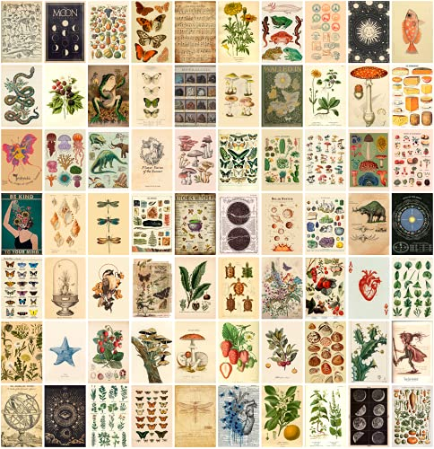 ANERZA Vintage Wall Collage Kit Aesthetic Pictures, Cottagecore...