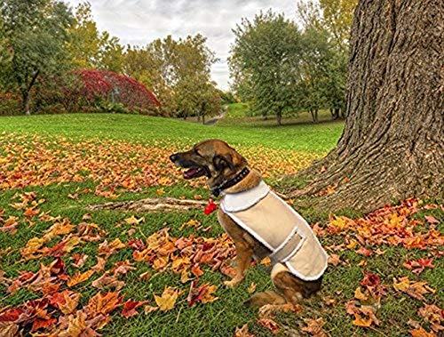CT DISCOUNT STORE Shearling Fleece Dog Jacket...