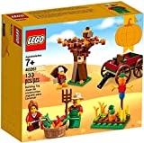 Includes 2 minifigures: a male and a female, plus buildable turkey and bird figures. Features a classic-style carriage, tree with seasonal colored leaf elements, grass area with various crops, collecting basket, bucket, pitchfork and a buildable scar...