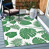 NFECO Reversible Rugs Plastic Rug Outdoor Rug Lightweight Outside Mats Modern Outdoor Rug for Patio Waterproof Portable Mats for RV Backyard Deck Picnic Beach, 5' x 7' Green
