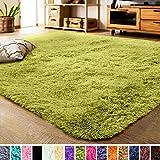 LOCHAS Luxury Velvet Fluffy Rug Modern Shag Area Rugs for Bedroom, Super Soft and Comfy Carpet, Non Slip Floor Fur Carpets for Kids Home Decor, 2x3 Feet Green