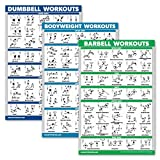 QuickFit 3 Pack - Dumbbell Workouts + Bodyweight Exercises + Barbell Routine Poster Set - Set of 3 Workout Charts (Laminated, 18' x 27')