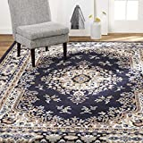 Home Dynamix Sakarya Traditional Area Rug, 7'8'x10'7' Rectangle, Navy Blue