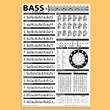 Essential Bass Theory Chart Version 2 (UPDATED & REVISED) • Bass Reference Poster 24'x36'