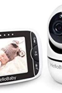 Camera Monitors of January 2021