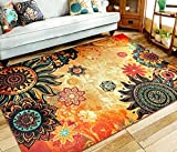 EUCH Contemporary Boho Retro Style Abstract Living Room Floor Carpets,Non-Skid Indoor/ Outdoor Large Area Rugs,52'x75' Lotus