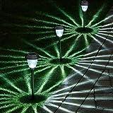 8 Pack Solar...image