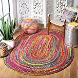 Safavieh Braided Collection BRD210A Hand-woven Bohemian Cotton Area Rug, 3' x 5' Oval, Red/Multi