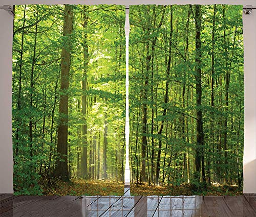 Ambesonne Woodland Curtains, Deciduous Forest Trees in Summertime...
