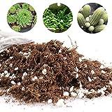 Nuestra mezcla de suelo y maceta de plantación complementaria proporcionará el ambiente ideal para tus plantas. Esto puede abrir la oportunidad de tener un deslumbrante e intrincado jardín en casa o simplemente proporciona los suministros necesarios ...