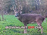 Bowhunting Tips & Advice