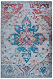 Mylife Rugs Traditional Vintage Non Slip Machine Washable Medallion Distressed Printed Area Rug, Multicolor 4'x6'