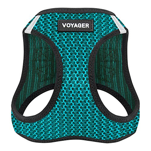 Voyager Step-in Air Dog Harness - All Weather Mesh, Step in Vest Harness for Small and Medium Dogs by Best Pet Supplies - Turquoise, X-Small (Chest: 13' - 14.5') (207-TQ-XS)