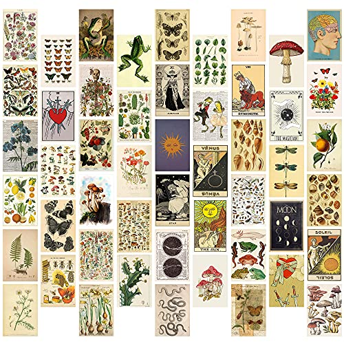 8TEHEVIN 50PCS Vintage Botanical Illustration Tarot Aesthetic...