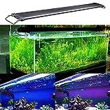 KZKR Aquarium Hood Lighting Fish Tank Light 48-60 inch lamp for Freshwater Saltwater Marine Blue and White Decorations Light 120-150 cm
