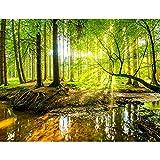 Papier peint intissé Forêt 352 x 250 cm - Tapisserie Decoration Murale...