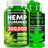 Hemp Gummies 300000 - Premium Stress & Anxiety Relief - Made in USA - 100% Natural & Safe Oil Gummies - Mood Enhancer & Immune Support - Rich in Vitamins B, E & Omega 3-6-9 - 60 PCS