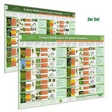 [2er Set] Essbare Wildkräuter für Grüne Smoothies Poster (DINA2) Teil 1 & 2 (2020): Schnell eindeutig erkennen, selber sammeln und mit gutem Gefühl ... selber sammeln und mit gutem Gefühl genießen)