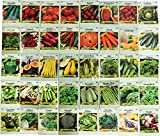 Set of 40 Vegetable and Herb Seeds - Semi Assorted - 100% Non-GMO & Heirloom - Great for Starting a Garden! High Germination Rate! (40)