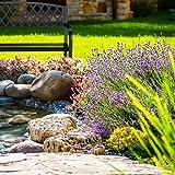 Relaxdays Gartenbank, bequemer 2-Sitzer, geflochtenes Design, für Terrasse & Balkon, HBT 86,5 x 127,5 x 58,5 cm, schwarz - 2
