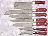 Custom Made Damascus Steel Kitchen Chef Knife Set 7 PCs with Chopper A-E 81-7C (Red)