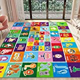 Partykindom Kids Play Rug Mat Playmat with Non-Slip Design Playtime Collection ABC, Shape, Season, Month, Opposite and Animal Educational Area Rug for Children Kids Bedroom Playroom (78.7 x 59 inch)