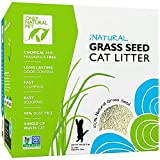 Only Natural Pet - Fast Clumping Cat Litter Non GMO Grass Seed All Natural Kitty Litter, Single or Multi Cat, Unscented - 18 lb Box