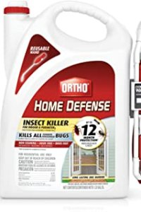 Best Ant Killer For Yard of November 2020