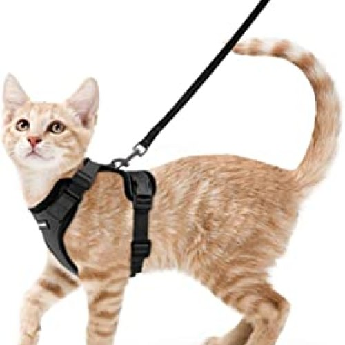 Escape-Proof Cat Harness and Leash
