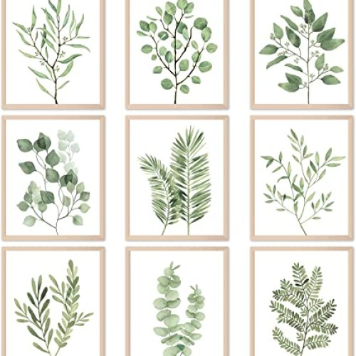 Botanical Plant Wall Art